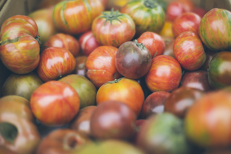Tomatoes_fullscreen